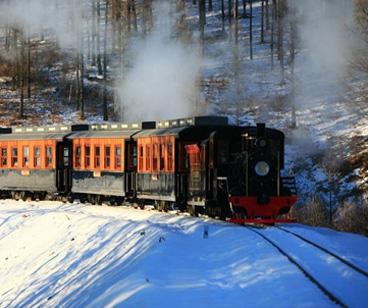 tren de turismo