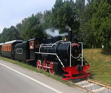 Hebei Zhushan Parque 63 asientos pista turismo tren