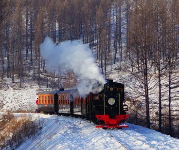 Sightseeing Train of Shandong L