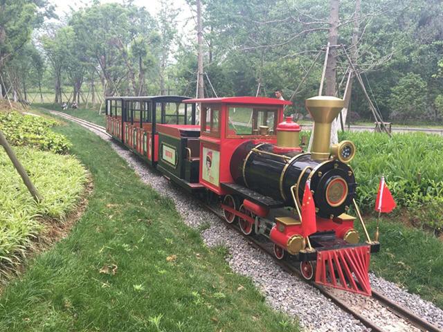 Take Dising mini train, visit dreamlike wonderland