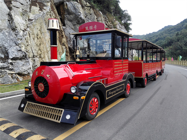 <b>Choose Dising sightseeing train, experience the best service</b>