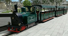 Three tips to use lithium battery of Dising Sightseeing Train