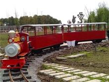 Dising Track Train In Jingzhou