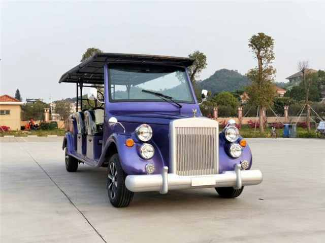 11 Seats Luxury Gasoline Power Sightseeing Car Model RR11