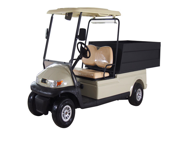2 seater Electric Utility Cart Model DS-H2