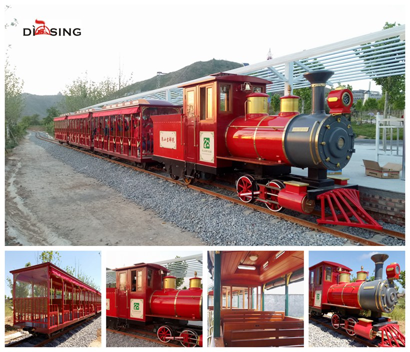 Track diesel Sightseeing Train
