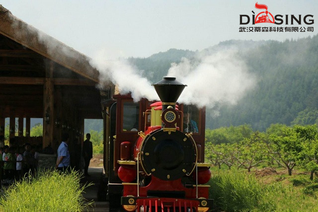 Short introduction for different kinds of Dising Train