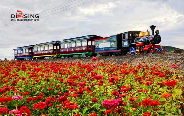 Theme park flower sea sightseeing train